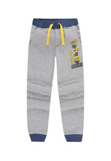 Minions® Pantaloni trening flausati Gri